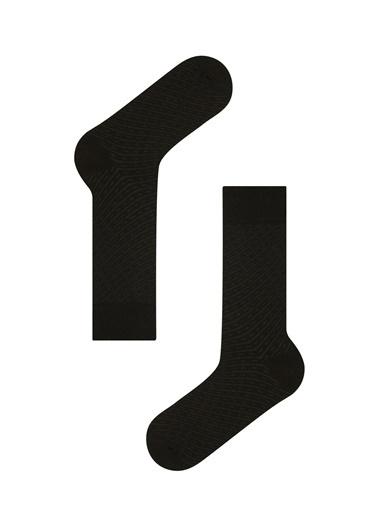 Penti Açık Gri - Siyah Erkek Line 3Lu Soket Çorap Gri